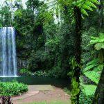 Millaa Millaa Falls