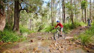 Atherton Atherton Tablelands Tropical North Queensland