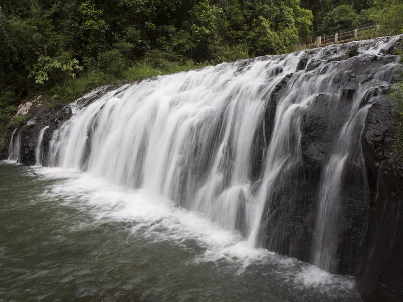 Atherton Tablelands Rainforests and Waterfalls