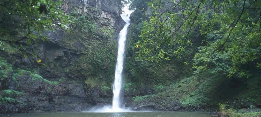 Wet Tropics Nandroya Falls
