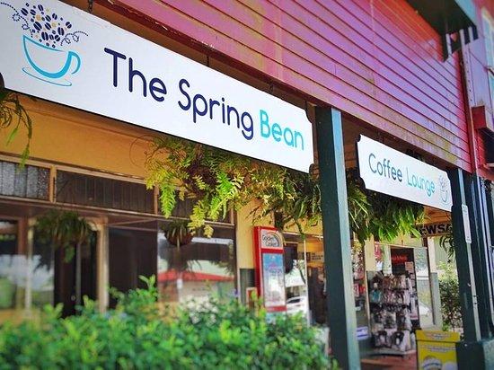 the-spring-bean